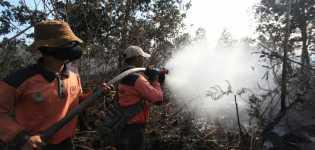 BMKG Deteksi 68 Titik Panas di Riau