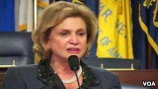 Anggota DPR dari Demokrat  Ajukan RUU Pengungsi Indonesia di Amerika