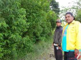 Jalan Desa Kutasuah (Karo) Sebagian Terputus, Ditumbuhi Semak Belukar yang Butuh Perbaikan