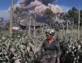 Gunung Sinabung Erupsi: Sektor Pertanian Rugi Rp41 Miliar Lebih, Lahan Rusak Sekitar 1500 Hektar