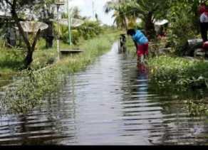 BPBD Riau: Empat Kabupaten Masih Terendam Banjir