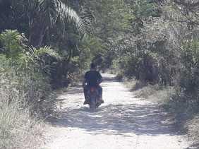 Akses Jalan di Desa Rambah Tampu Rusak Parah, Warga Berharap Diperbaiki