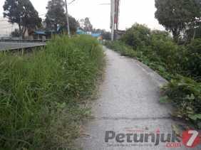 Potret Semak Belukar  di Sepanjang Trotoar Jalan Jamin Ginting (Berastagi) dan...