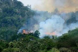 BMKG Pekanbaru: 7 Titik Panas dan 5 Titik Api Terpantau di Riau
