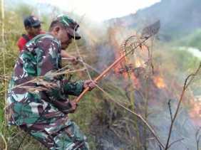 Cegah Karhutla Meluas, Babinsa Koramil 02/TP Bantu Padamkan Api di Hutan Tongging