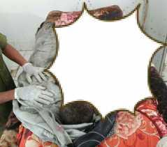 Kebarakan Rumah di Sipolupolu, Anak Pemilik Rumah  Ikut Terbakar