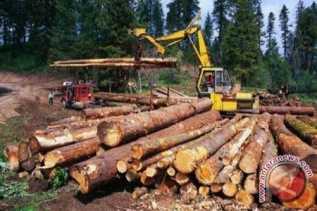 Delapan Ton kayu Diduga Ilegal Berhasil Diamankan Polres Dumai