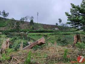 Instruksi Gubsu, Aksi Perambahan Hutan di Tahura Bukit Barisan (Karo - Langkat) Akan Ditertibkan