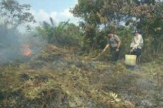Kebakaran Lahan di Inhil Capai Puluhan Hektare