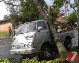 Hujan Deras Disertai Angin Kencang Landa Kabanjahe: Ada Pohon Tumbang Timpa Mobil dan Banjir
