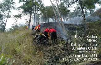 Babinsa Koramil 02/TP Padamkan Kebakaran Hutan Di Desa Sikodonkodon