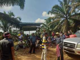 Masyarakat Adat Menolak Lahan PT.PN V Dieksekusi oleh PN Bangkinang, Ini Alasannya...