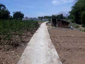 Wilayah Pertanian, Pemdes Semangat Gunakan Dana Desa Prioritaskan Akses Jalan dan Drenaise