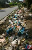 Warga Terganggu Ada Sampah Berserakan  di Jalan Seroja