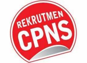 Pelamar CPNS di Pekanbaru Meningkat