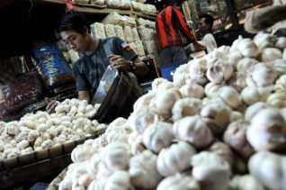 Aturan Wajib Tanam Bawang Bagi Importir Segera Terbit