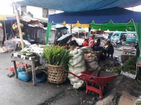 Pedagang Korban Kebakaran Pasar Berastagi Berharap TPS Dibangun Sebelum Tahun Baru