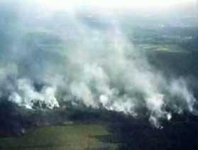 BMKG: 6 Hotspot di Riau Terdeteksi di 3 Daerah