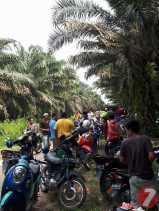 Hibah Masyarakat ke Camat: Kembali, Konflik Kebun Sawit 20 Hektare di Pangkalan Kuras