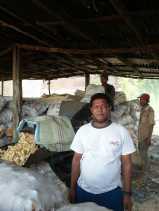 Harga Jagung Anjlok, Ini Harapan Petani di Karo Kepada Pemerintah