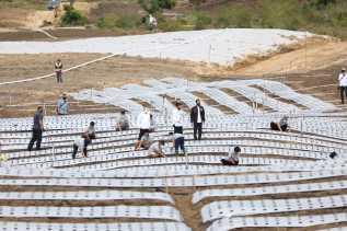 Presiden RI Jokowi Tinjau Lokasi Food Estate di Humbahas Wilayah Korem 023/KS