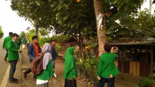 Hari Pohon se-Dunia, Mahasiswa IAIN dan UGN Membersihkan Spanduk dan Iklan dari Pohon Kota