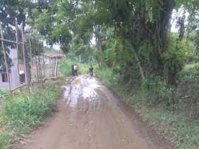 Warga: Dana Kelurahan Tiga Binanga Tahun 2019 Diduga KKN, Ini  Tanggapan Lurah...