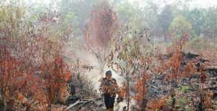 BMKG Pekanbaru: 29 Titik Panas Menyebar di Riau, Ini Wilayahnya