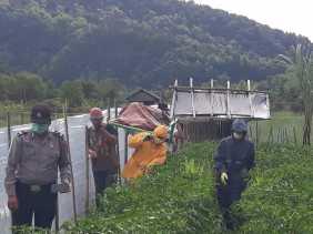 Jaya Subur Sinuhaji Ditemukan tak Bernyawa Didalam Gubuknya di Juma Kenjahe Desa Doulu