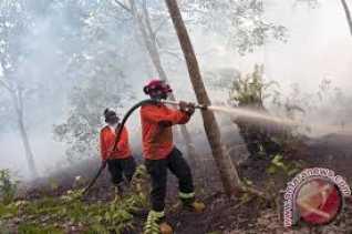 Kebakaran Lahan di Bagan Sinembah, Satgas Berupaya Padamkan Api