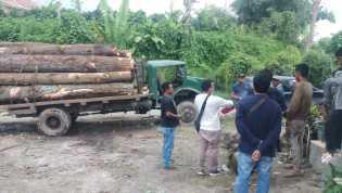 Polres Karo Amankan 1 Unit Truk Kingkong Muat Kayu Pinus yang  Diduga Ilegal di Desa Ajijulu