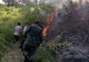 Karhutla: Bersama Warga, Koramil 06/MT dan Polsek Munthe Padamkan Api di Desa Gunung Saribu