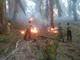 Karhutla, TNI - POLRI Berjibaku Padamkan Api di Desa Lau Mulgap (Mardingding)