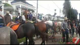 Ada Kisruh di Pordasi Karo? Puluhan Peternak dan Pemilik Berkuda Menuju ke Kantor Bupati