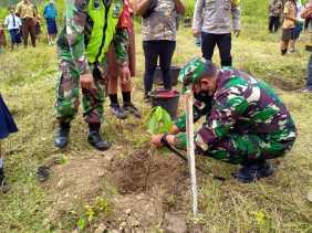 Pembinaan Lingkungan Hidup Kodim 0205/TK Gelar Penanaman Pohon Berbuah Di Tongging