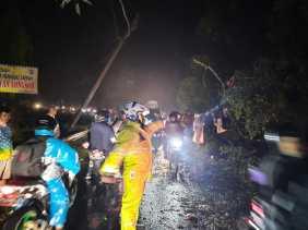 Usai Bantu Warga Singkirkan Pohon Tumbang di Simpang Daulu, Polres Karo Atur Lalin Cegah Macet